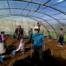 Création d'un centre d'éducation à l'environnement, au développement et à la solidarité internationale