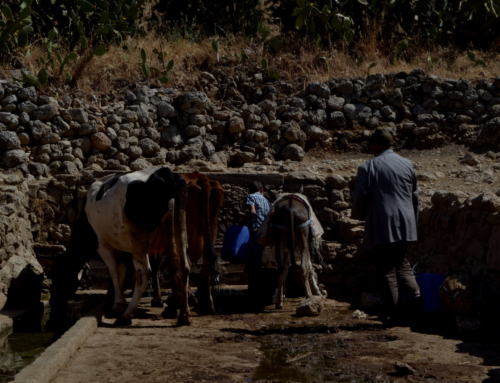 """Projet """"Porteurs d'eau"""", d'échange de jeunes franco-marocains dans le cadre d'Erasmus, juin -juillet 2019"""